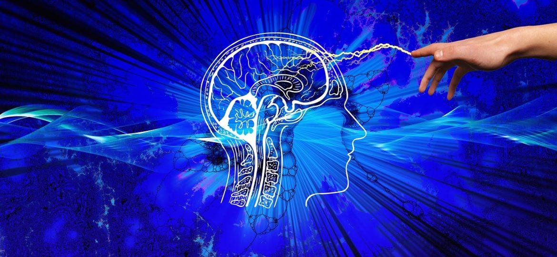 Descubre Estos 5 Trucos De Neuromarketing Para Tu Empresa En Ventas
