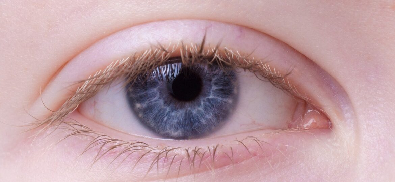 Eye Tracking De Las Mejores TÉcnicas De Neuromarketing Digital Para Empresas
